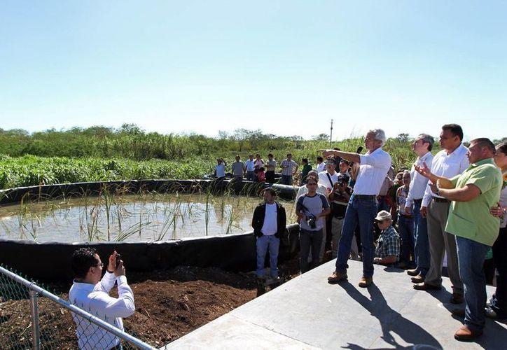 El titular de Seduma, Eduardo Batllori, explica al gobernador Rolando Zapata, cómo funcionan los biodigestores. (Cortesía)