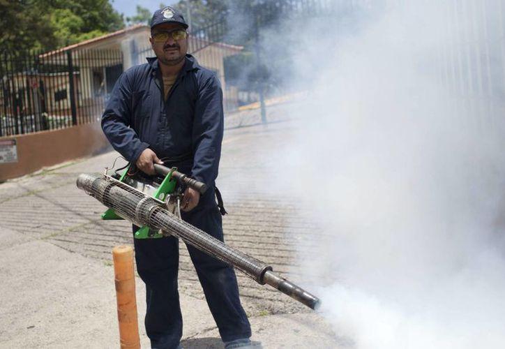 Un empleado público de salud fumiga en una calle de Tegucigalpa, Honduras. (EFE/Archivo)