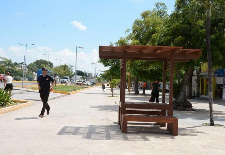 La avenida ha tenido remodelaciones para lucir más limpia y atractiva. (Redacción/SIPSE)