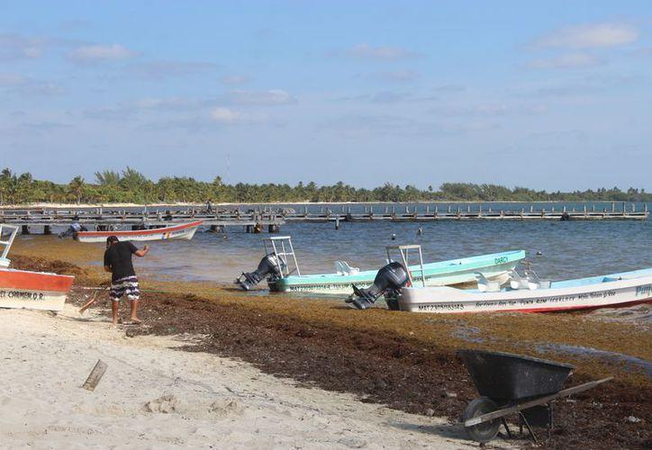 Los pescadores se han visto afectados en las últimas temporadas. (Sara Cauich/SIPSE)