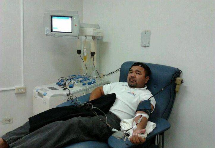 La población masculina pierde el exceso de hierro cuando dona sangre. (SIPSE)