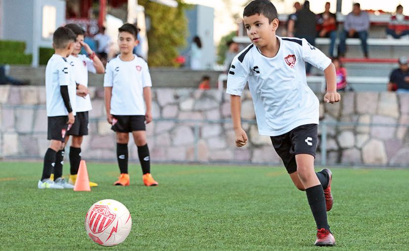 La filial es muy probable que tenga su sede en la Unidad Deportiva del Sur.(clubnecaxa.mx)