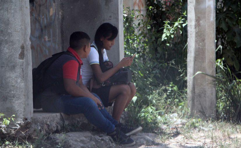 Este año se espera sumar a 50 comunidades de Quintana Roo a la red de conexión de internet.  (Paola Chiomante/SIPSE)