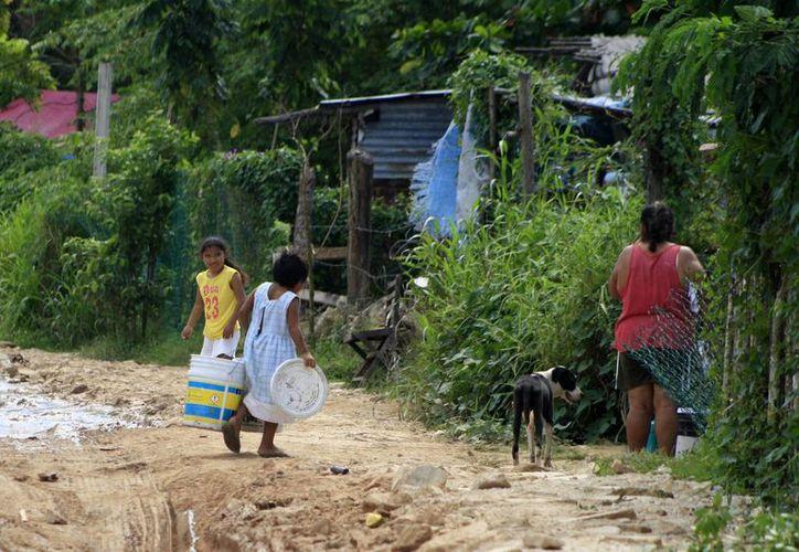 Prevén sancionar a los que promuevan los asentamientos irregulares. (Harold Alcocer/SIPSE)