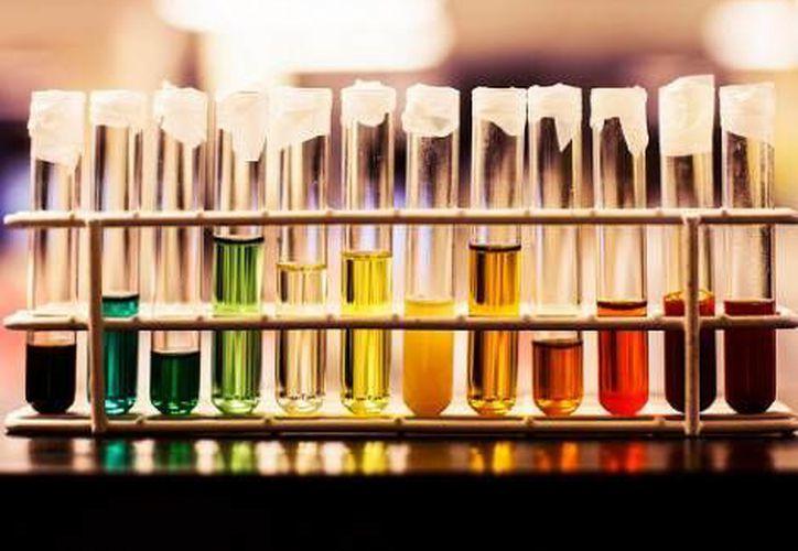 Sólo los colores oscuros son determinantes para el análisis. (Heather West)