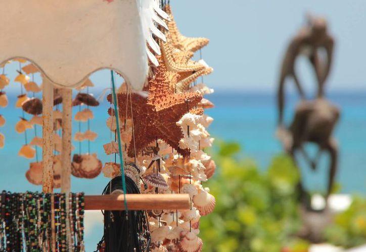 Mientras que en algunos países las estrellas de mar son organismos, en México se venden como adornos. (Gustavo Villegas/SIPSE)