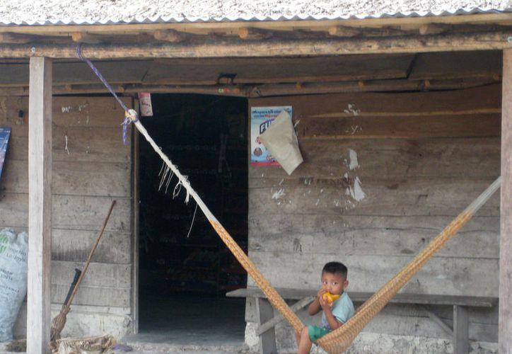 De acuerdo con el Inegi, en Q. Roo existen nueve mil 430 viviendas con piso de tierra; principalmente en Carrillo Puerto, Bacalar, José María Morelos y Lázaro Cárdenas. (Javier Ortiz/SIPSE)