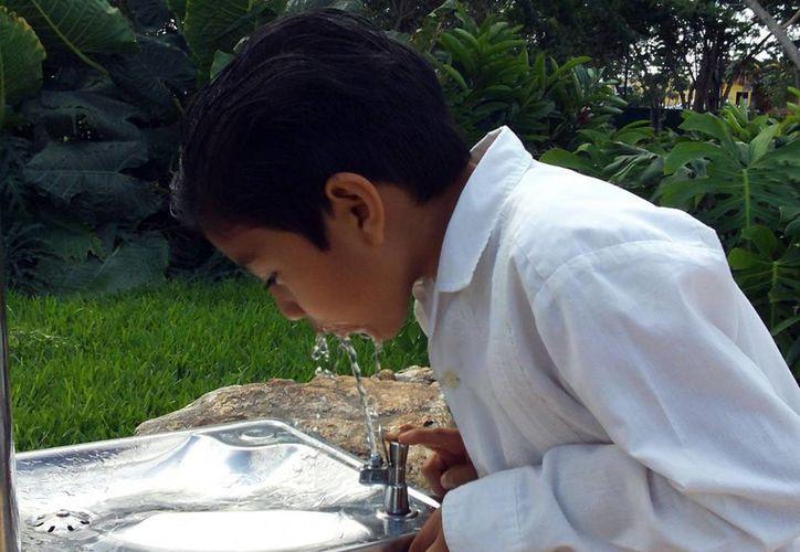 Gran parte de los yucatecos considera que puede beber agua potable sin temor a enfermarse. (Milenio Novedades)