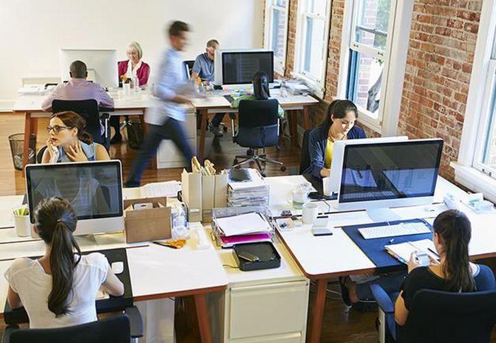 Los profesionistas mexicanos priorizan la estabilidad laboral al momento de seleccionar la empresa en la que trabajarán. (El Economista)