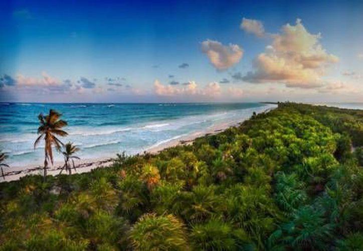 Maya Ka'an es el primer destino ecoturístico en México que cuenta con el mayor número de empresas certificadas. (Contexto/Internet)