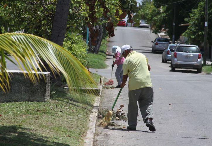 Desde las cuatro de la mañana hasta las 142 de día, estos trabajadores realizan la limpieza. (Joel Zamora/SIPSE)