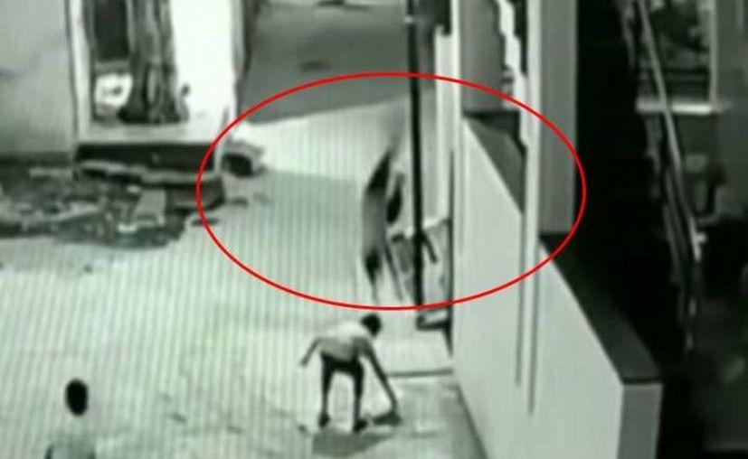 El niño cayó desde una altura de más de 12 metros. (Foto: Contexto/Internet)