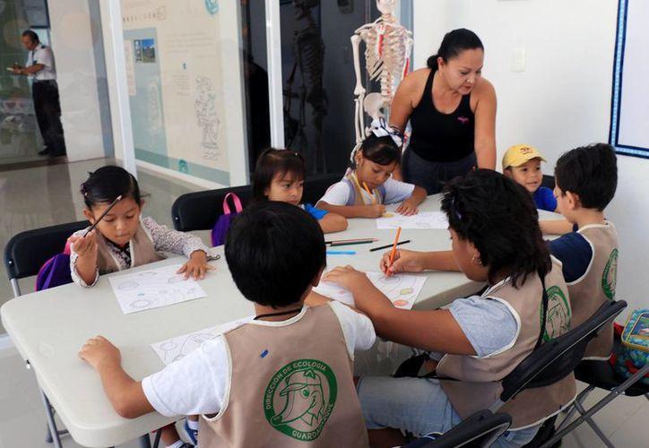 Las actividades brindan a los niños mayor conocimiento. (Cortesía/SIPSE)