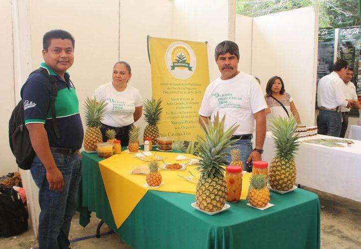 Este año el Fomento a la Economía Social tienen programado una bolsa de 3.2 millones de pesos para apoyar 25 proyectos.  (Benjamín Pat/SIPSE)