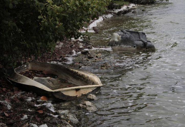 Las actividades que se realizan en la costa de la Península de Yucatán tienden a dañar el ecosistema de esta zona. (Tomás Álvarez/SIPSE)