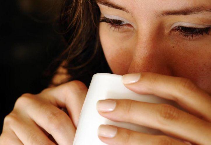 Los jóvenes universitarios ponen de moda la ingesta de café y el consumo de refrescos, asegura una experta. (Foto de Contexto/Internet)