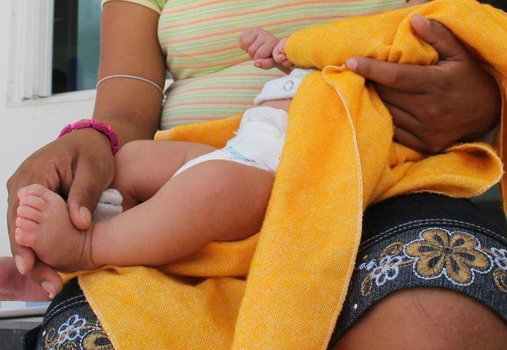 Cuatro de las jóvenes becadas ya tienen a su infante en brazos. (Carlos Horta/SIPSE)
