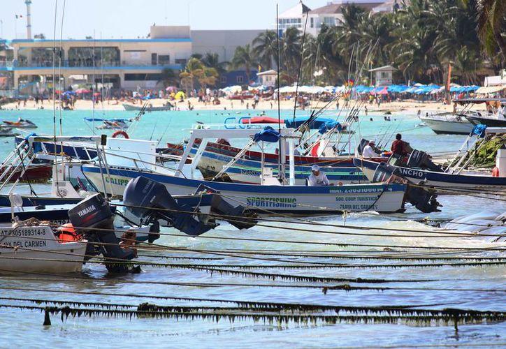 La Cooperativa turística del Mar Caribe ya esperaba esta temporada alta de invierno. (Octavio Martínez/SIPSE)