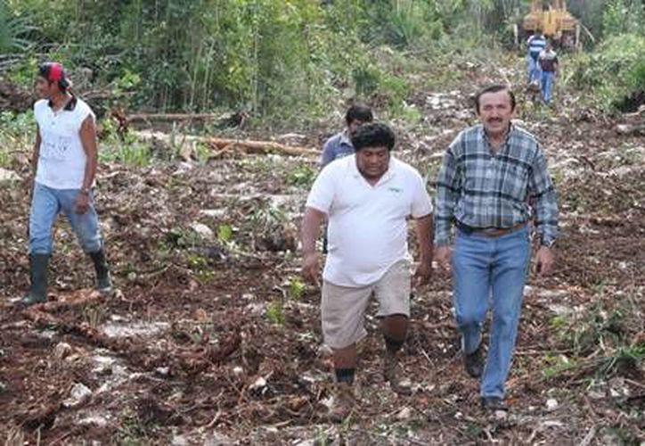El edil, José Domingo Flota Castillo ha supervisado los trabajos de limpieza. (Redacción/SIPSE)