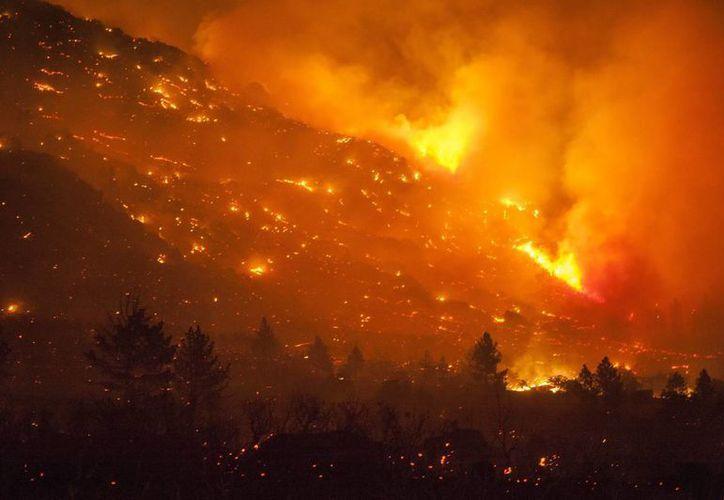 En la zona donde ocurrió el incendio la temperatura era superior a los 37 grados centígrados. (EFE/Contexto)
