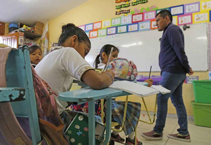 La reforma educativa no ha favorecido a los maestros. (Jesús Tijerina/SIPSE)