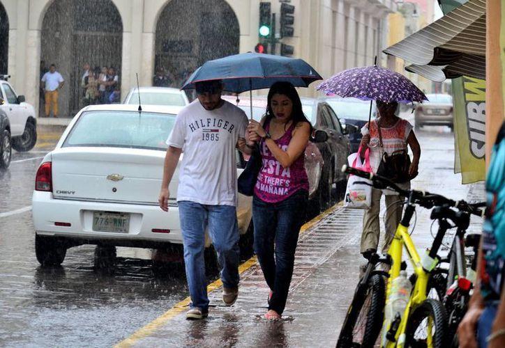 El sábado una breve pero intensa lluvia tomó por sorpresa a los habitantes de Mérida. (Milenio Novedades)