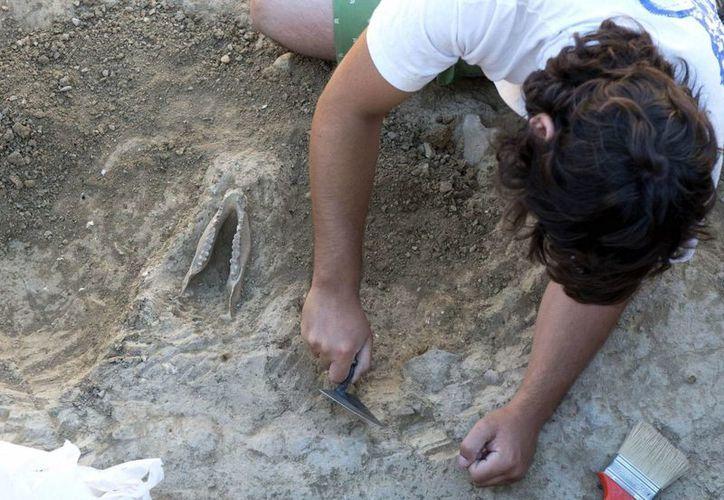 Las obras para la ampliación del metro de Río Janeiro arrojaron sorprendentes descubrimientos arqueológicos. (EFE/Archivo)