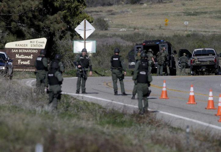 La Policía buscará elementos que permitan la identificación del cuerpo. (Agencias)