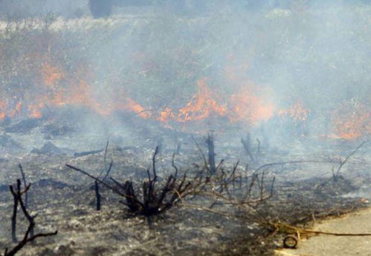 La Conafor recordó a las autoridades de los municipios estar atentos al uso adecuado del fuego en sus poblaciones. (Milenio Novedades)