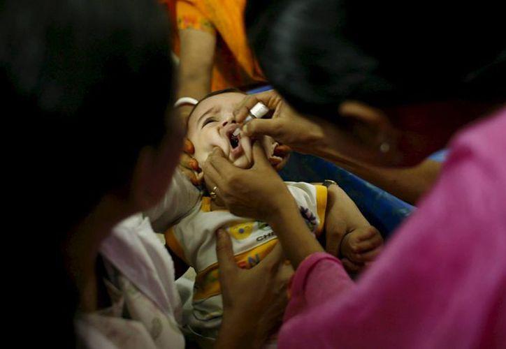 La región sur de Haití es la más vulnerable a la presencia del cólera. (EFE)