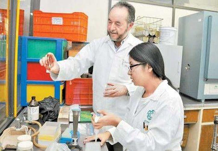 Gerardo Aparicio Ozores, doctor en microbiología de la Escuela Nacional de Ciencias Biológicas,  ha trabajado durante una década en diversos proyectos en torno a la resistencia de diversos microorganismos. (Milenio)
