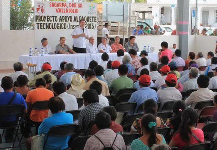 La zona de Valladolid tiene potencial para vender su producción a la Riviera Maya. (SIPSE)