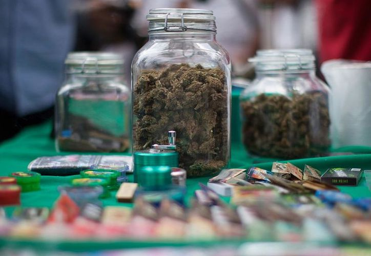 En 2018, venderán los primeros productos con cannabis en México. (Miguel Dimayuga)