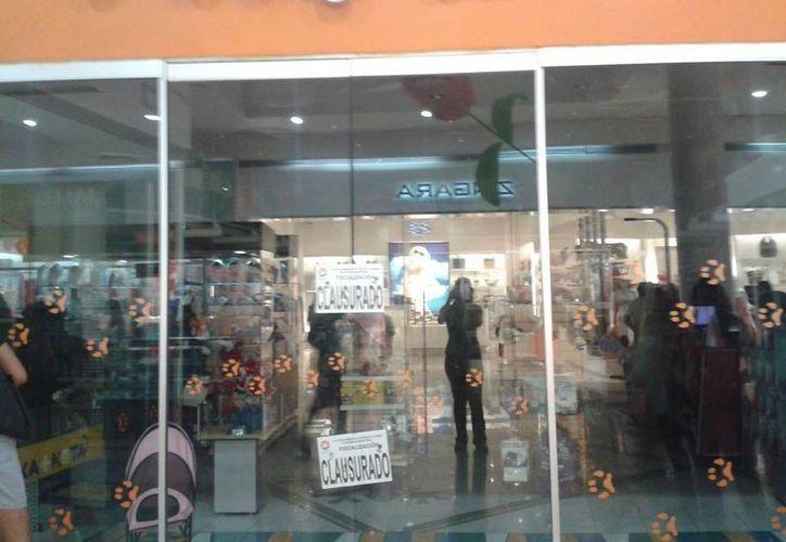 Defensores de los animales difundieron la clausura de la tienda a través de las redes sociales. (Facebook/Denuncia +KOTA)