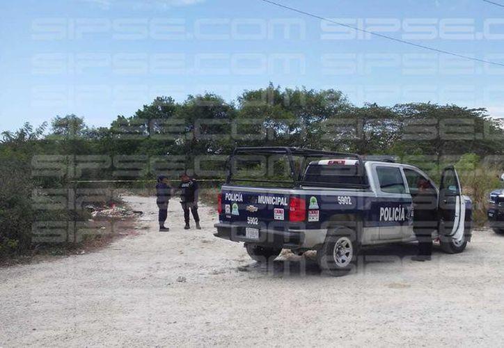 Elementos de seguridad pública arribaron al lugar acompañados de los agentes de la policía ministerial. (Erick Cauich)