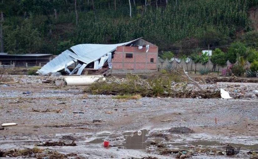 Los campesinos no quieren retirarse del refugio temporal porque el Presidente prometió ayudarlos. (Notimex/Foto de contexto)