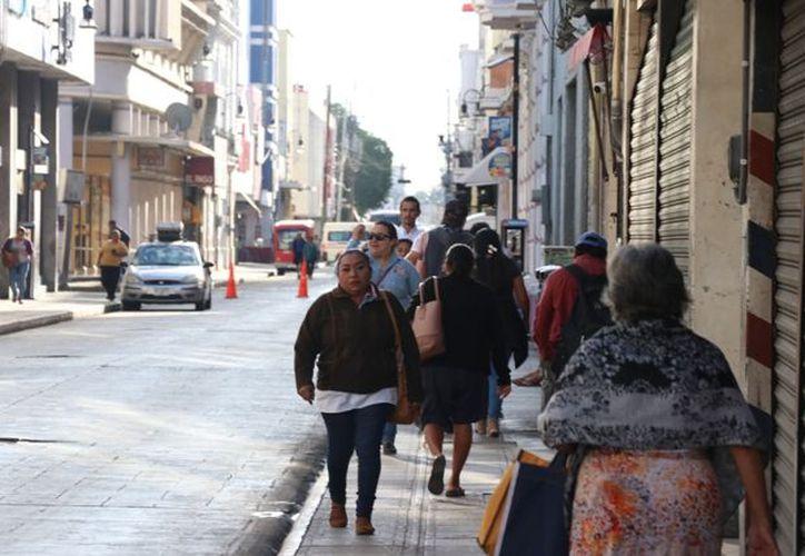 En el cono sur de Yucatán habrá temperaturas mínimas menores a los 14 grados Celsius. (José Acosta)