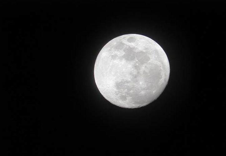 Por única vez en el año, este lunes 14 de noviembre la Luna estará unos 28 mil kilómetros más cerca de la Tierra, si tomamos en cuenta la distancia promedio. (SIPSE)