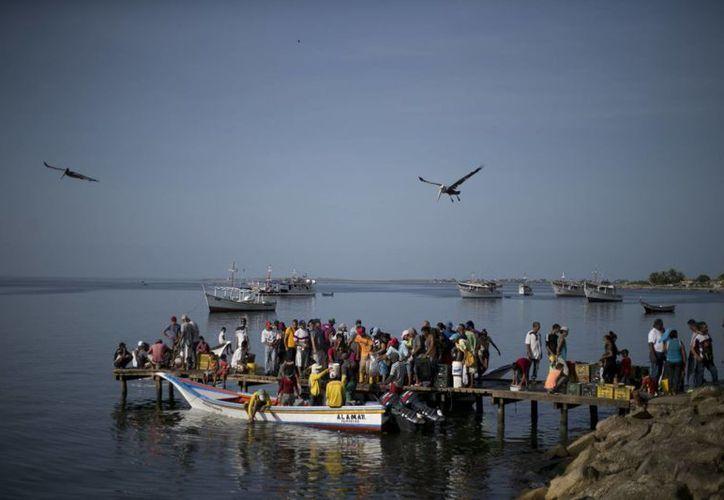 Un grupo de personas espera en un muelle para comprar sardinas a pescadores en la zona de Los Cocos, en Porlamar. (AP/Ariana Cubillos)