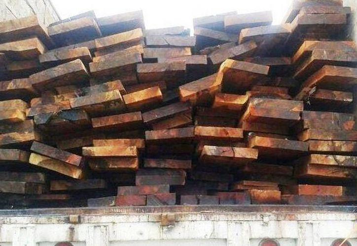 La Profepa detectó el cargamento ilegal de madera durante una revisión. (SIPSE)