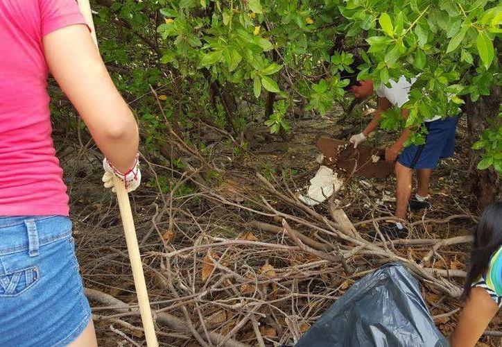 En la jornada de limpieza participaron estudiantes. (Redacción/SIPSE)