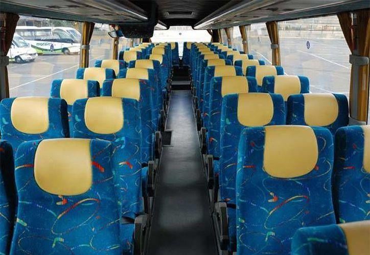 Viajar sentado de forma correcta puede reducir considerablemente el riesgo de muerte. (excelsior.com.mx)