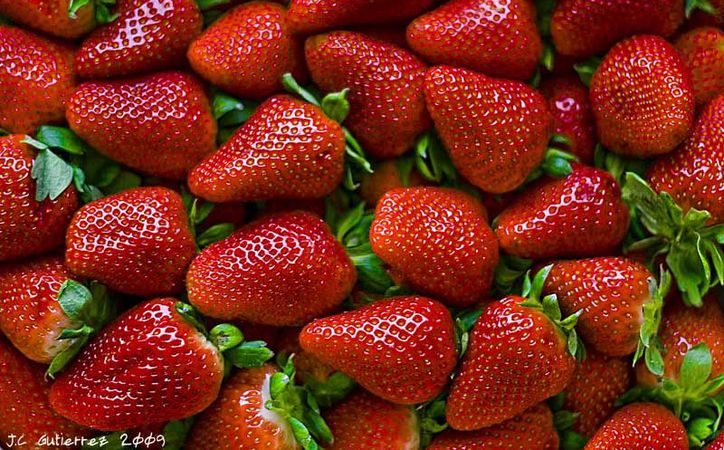 Las fresas, pueden reducir el riesgo de un ataque al corazón en un 32% en mujeres jóvenes. (Hidroponia).