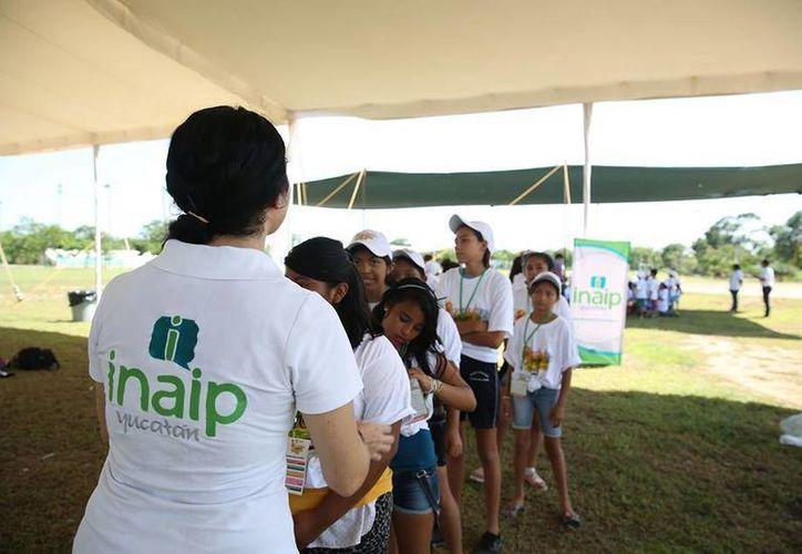 Un total de 253 niños han sido instruidos sobre cuestiones como la transparencia, el cuidado de los datos y la honestidad. (Milenio Novedades)