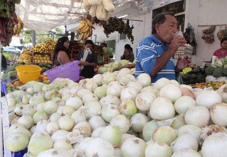 Algunos productos son afectados por hongos y plagas. (Tomás Álvarez/SIPSE)