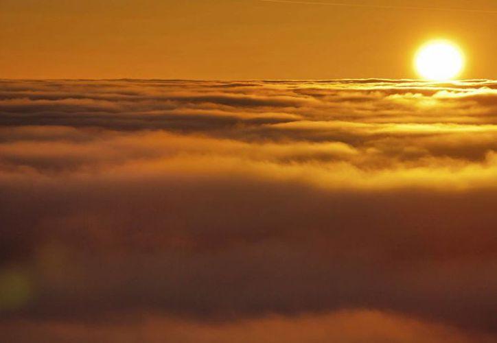 Los astrónomos no pueden predecir con exactitud si el cometa se destruirá al estar tan cerca del sol, o no. (EFE/Archivo)