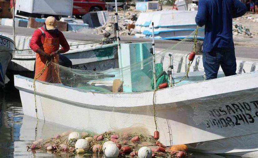 La Secretaría de Pesca y Acuacultura Sustentables adelantará hoy los pagos de apoyos. (Novedades Yucatán)