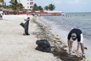 Realizan jornada de limpieza en Playa del Niño