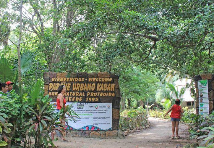 El parque Kabah pronto contará con carteles de señalización. (Jesús Tijerina/SIPSE)
