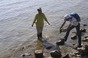 <i>Levantan</i> más de mil 200 kilos de basura en la Bahía de Chetumal